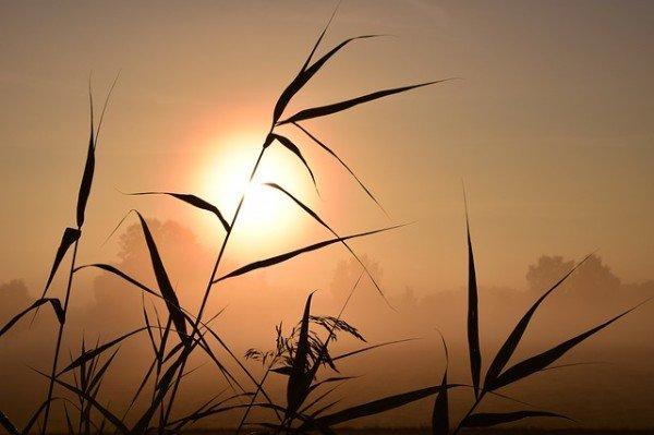 zonsopkomst in de herfst